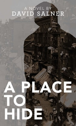 A Place to Hide by David Salner