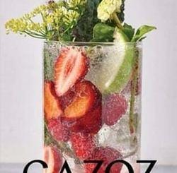 Gazoz: The Art of Making Magical, Seasonal Sparkling Drinks by Adeena Sussman, Benny Briga