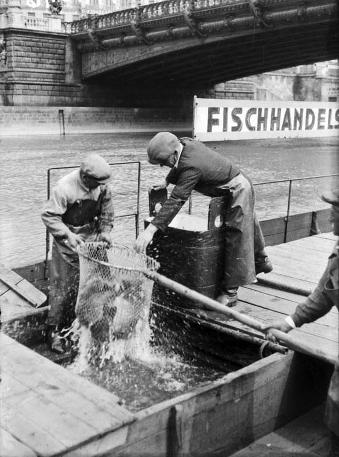 Vienna city fish market on the Danube canal - Fischhandels-Aktiengesellschaft next to Salztorbrücke bridge 1930