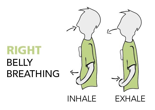 "Image text: ""Right Belly breathing."" Image shows upright person belly moving out an chest remaining still on inhale. His belly moves back in and chest remains still on exhale."