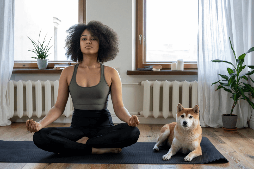 Holistic Strategies for the Stresses of Everyday Life