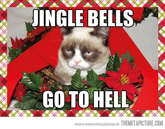 Grumpy Cat Christmas Jingle Bells