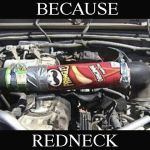 Because Redneck Pringles Car Mod