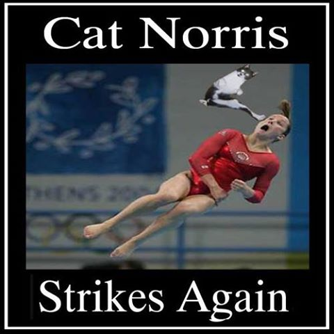 Cat Norris Strikes Gymnast