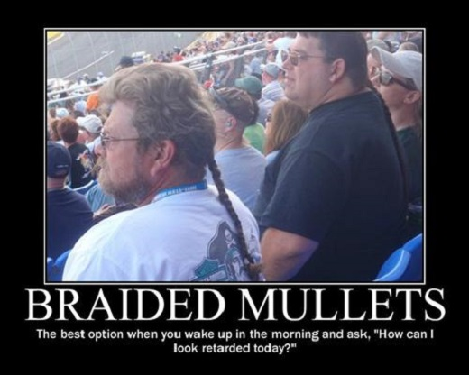 Braided Mullets image