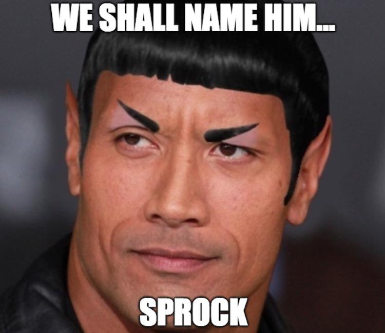 Sprock
