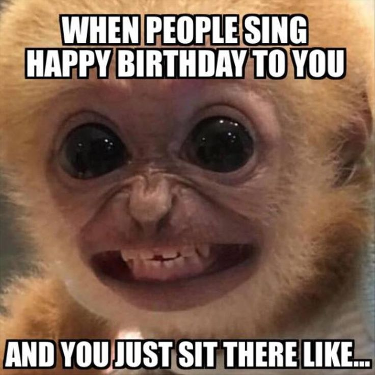 When People Sing Happy Birthday image