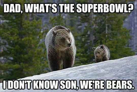 Super Bowl Bears