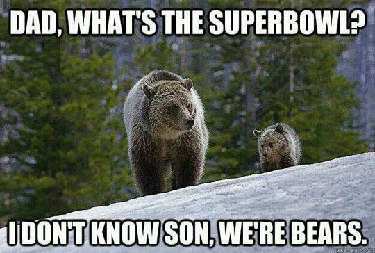 Super Bowl Bears