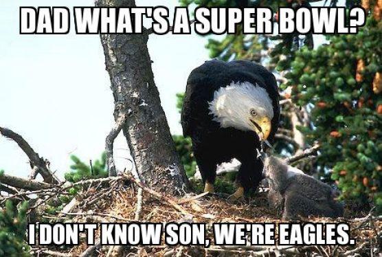 Super Bowl Eagles