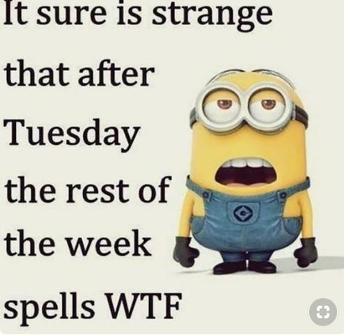Tuesday WTF