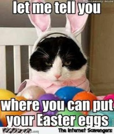 Shove Your Easter Eggs image