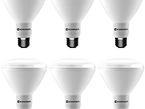 Ecosmart Daylight LED BR30 Dimmable Flood Bulb, 65W Replacement, 9 Watt, 685 Lumens – 5000K – Indoor/Outdoor Rated (6-Pack)