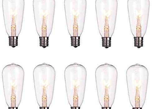 Monkeydg 10-Pack Edison Light Bulbs ST40 Clear Replacement Bulbs-7 watts 120 Volts E17 Screw Base for Outdoor Indoor Patio Edison String Lights-Clear