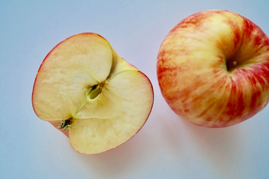 Vegan Apple + Walnut Spice Cake