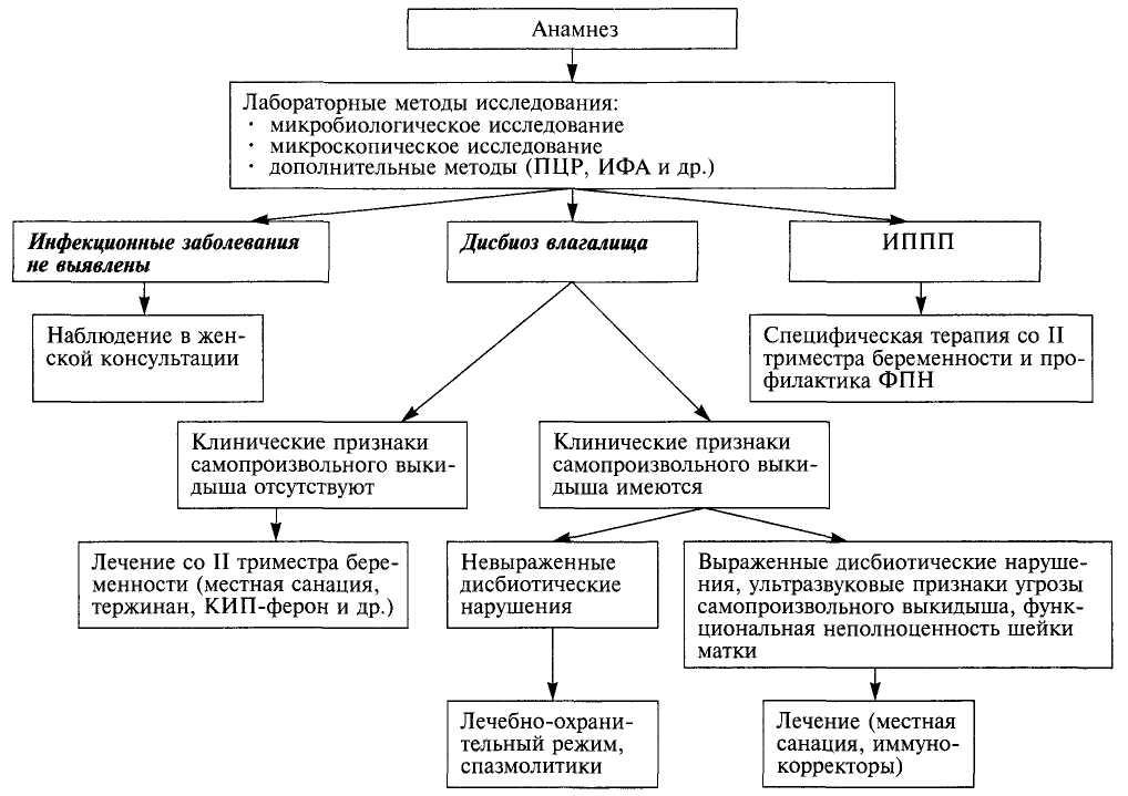 Центр по невынашиванию беременности на васильевском