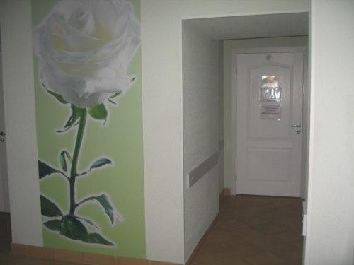 белая роза спб мед центр кабинеты