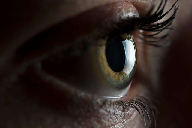 Eye Closeup with 24in Softbox
