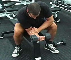 support-forearm-dumbbell-wrist-curl-on-flat-bench.jpg