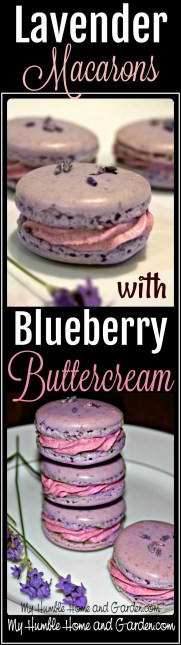How To Make Lavender Macarons With Blueberry Buttercream on MyHumbleHomeandGarden.com