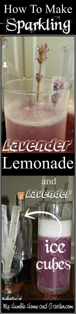How To Make Sparkling Lavender Lemonade on MyhumbleHomeandGarden.com