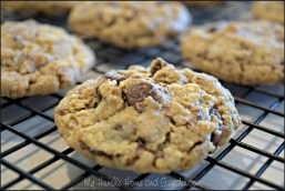 Oatmeal Chocolate Chip Cookies on MyHumbleHomeandGarden.com