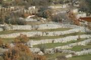 Pogled na zaboravljena dalmatinska sela u zagori -Dobrinče Zagvozd-