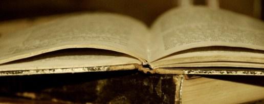 Riječnik zaboravljenih dalmatinskih riječi