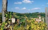 Tradicionalni običaji za rujan mjesec berbe i rujnog vina