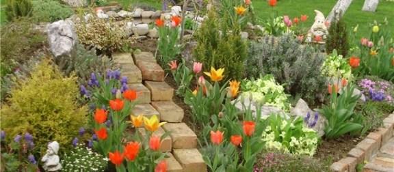 Vrt s cvijećem