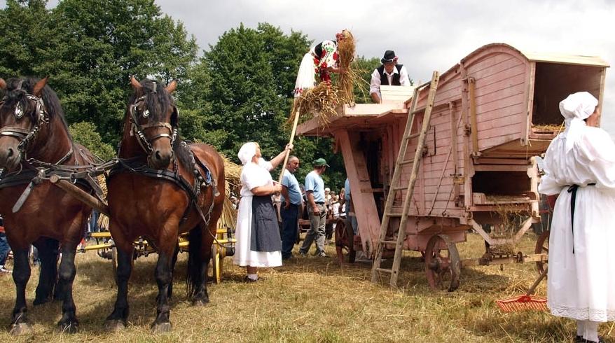 Tradicionalna upotreba konja, život i posao s konjima