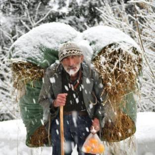 Seljački poslovi na selu