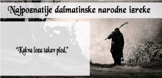 dalmatinske izreke
