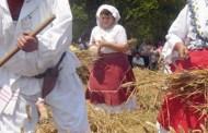 Što je tradicionalna moba ili uzajamna pomoć