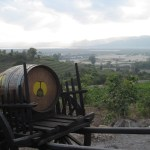 myanmar-inle-lake-red-cedar-winery