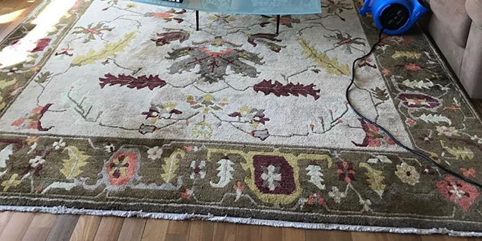 NYC Rug Cleaning Experts