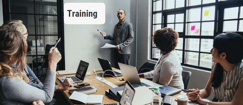 Employee Training and Assessment