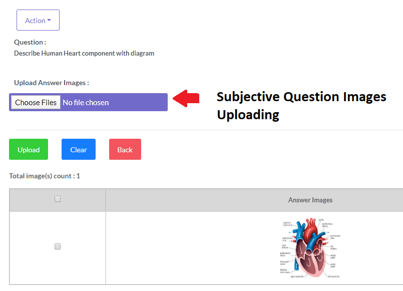 Option to add images during Online Subjective Exams