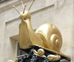 L'Escargots Montorgueil 5