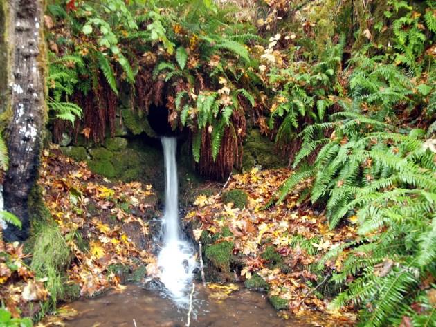 Beaver Falls - Clatskanie Oregon