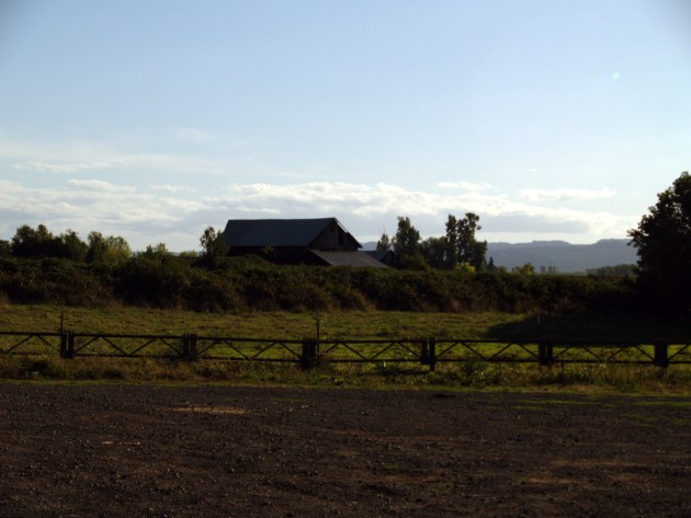 Sauvie Island Barn