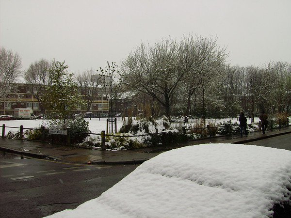 Campbell Road Snow