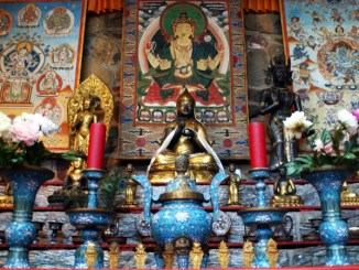 Upcoming Events at the Jacques Marchais Tibetan Museum January - February 2020