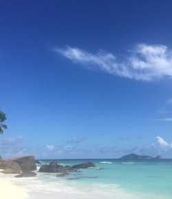 Solo in the Seychelles