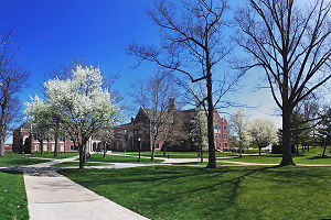 English: Grove City College campus during the ...