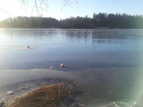 -8 grados en el lago Åsnen - 5