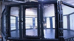 MMA cage (2)