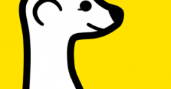 meerkat-300x156
