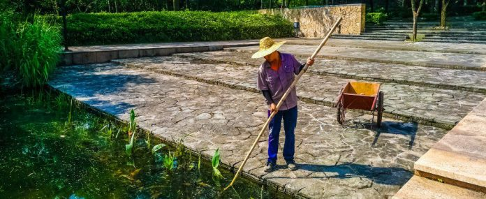 outside-huawei-office-shenzhen-gardener-china-sun-hat-overall-garden-work-labor