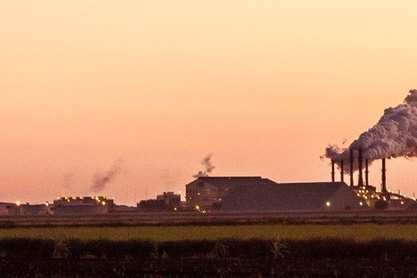 Besides the greenhouse gas emissions, factory farms also create serious pollution problems for the surrounding areas.